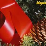 Noël et les branches de sapin