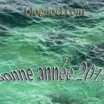 bonne-année-2011-mer