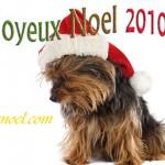 joyeux-noel-chien-noel