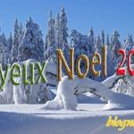 joyeux-noel-foret-neige