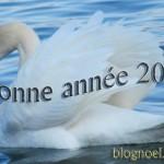 nouvel-an-2010-cygne